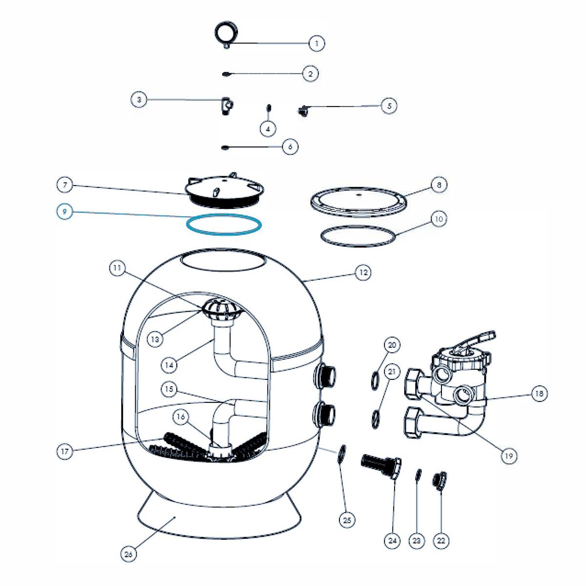 O- ring für transparenten Deckel für VIENNA II Filter  O- ring für transparenten Deckel für VIENNA II Filter